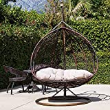 Jerry & Maggie - Double Seats Lovers Seats Couple Seats Patio Swing Chair Outdoor Wicker Plastic Tear Drop Swing Lounge Chair with Gray Mat & Support Frame