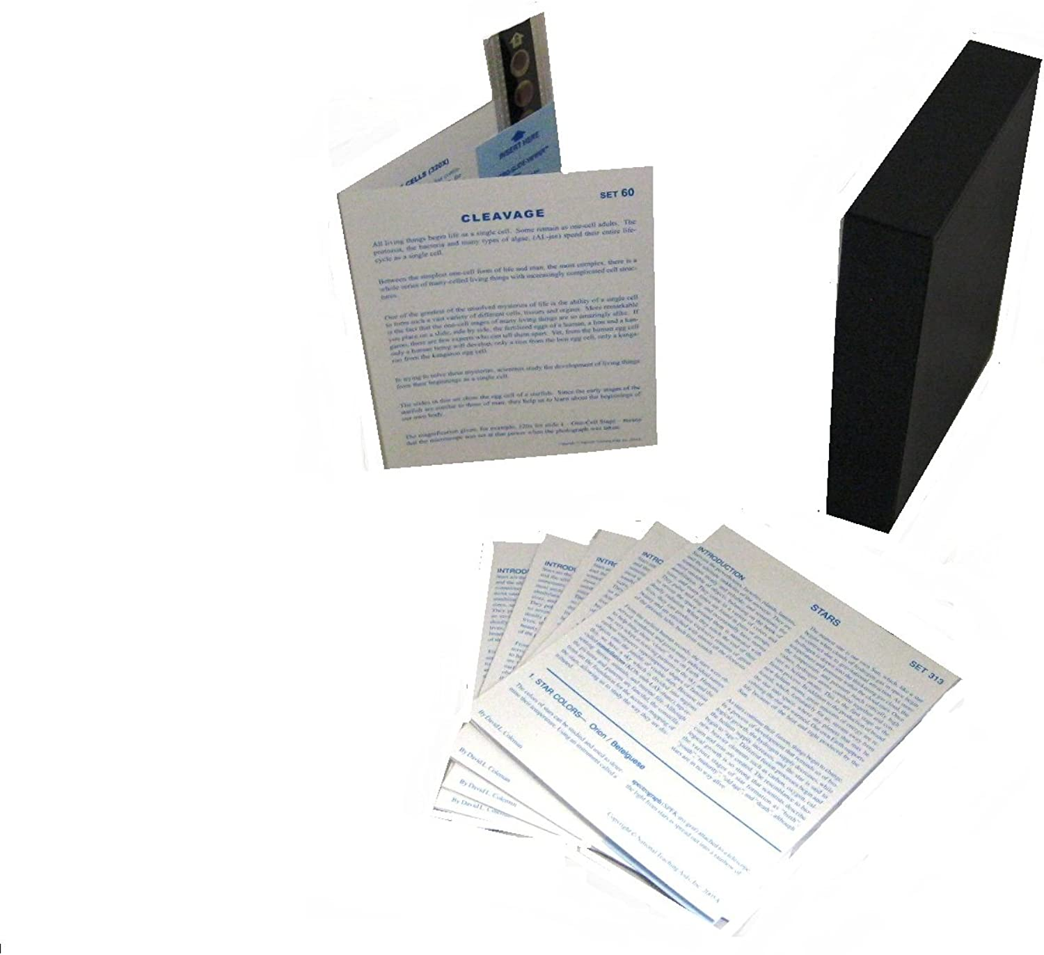 American Educational Microslide Cleavage Lesson Plan Set (10 slides in a pack)