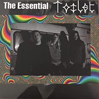 The Essential Toilet