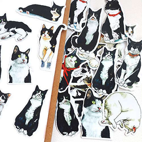 BAIMENG Hand Account Sticker, Hand Account Diary, Mobile Phone Decoration Paste, Cute Animal Kitty, Cute Stupid Animal Hand Account 22Pcs