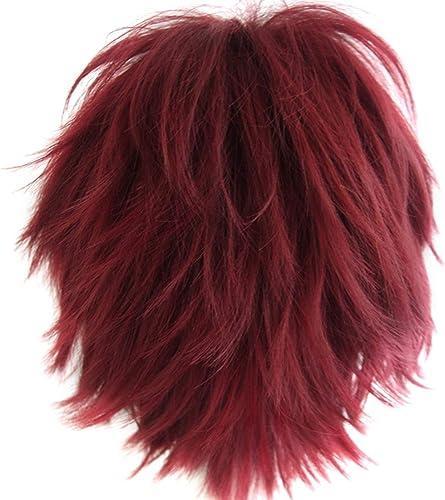 Alacos Unisex Cosplay Short Straight Hair Wig Women Men Rock Cartoon Anime Con Party Dress Wigs Dark Red Wig+ Free Wi...