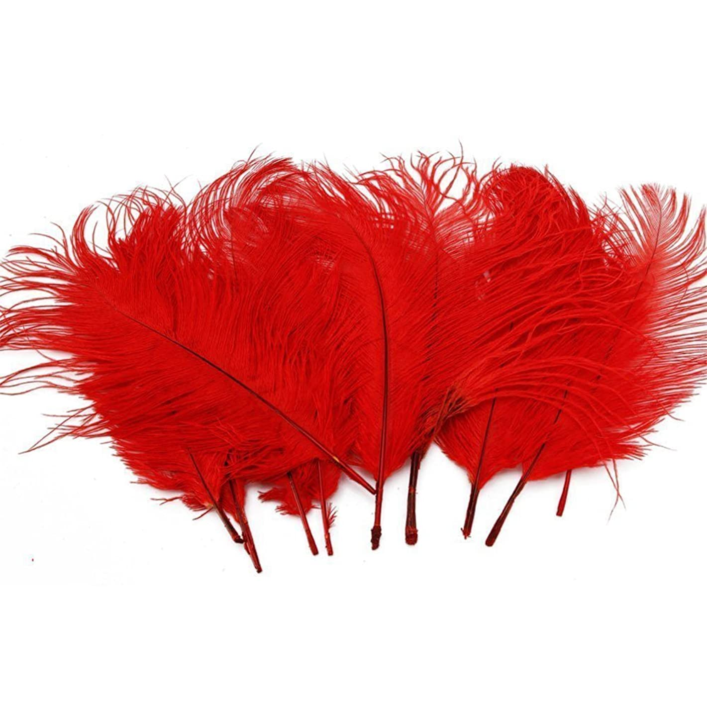 Sealike 50 Pcs 10-15cm Real Natural Home Decor Ostrich Feather Great Party Wedding Party Home Hair Decorations with a Stylus(Red)