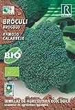 Semillas ECOLOGICAS Brocoli - Broculi 4 Gr