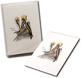 Earth Sky + Water - Brown Pelican Notecard Set - 8 Blank Cards with Envelopes