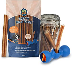 Bow Wow Labs Bully Buddy Starter Kit - Anti-Choking Bully Stick Safety Device for Dogs