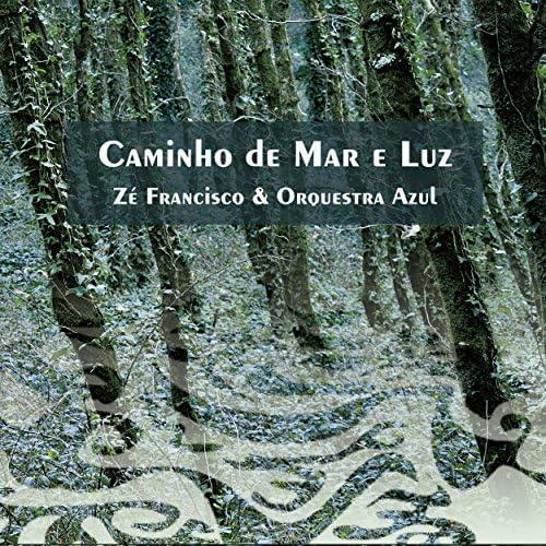 Zé Francisco & Orquestra Azul