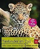 Tierkinder im Zoo: Affe, Löwe, Elefant & Co