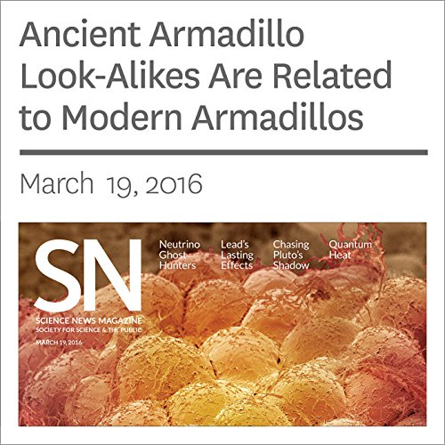 『Ancient Armadillo Look-Alikes Are Related to Modern Armadillos』のカバーアート