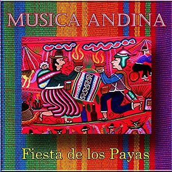Musica Andina - Fiesta de los Payas