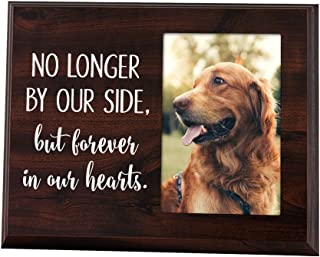 Elegant Signs Pet Frame Memorial No Longer by Our Side but Forever in Our Hearts