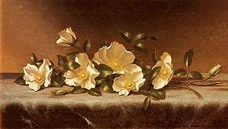 手書き-キャンバスの油絵 - 美術大学の先生直筆 - Cherokee Roses On A Light Gray Cloth Martin Johnson Heade 絵画 洋画 複製画 ウォールアートデコレーション -サイズ10