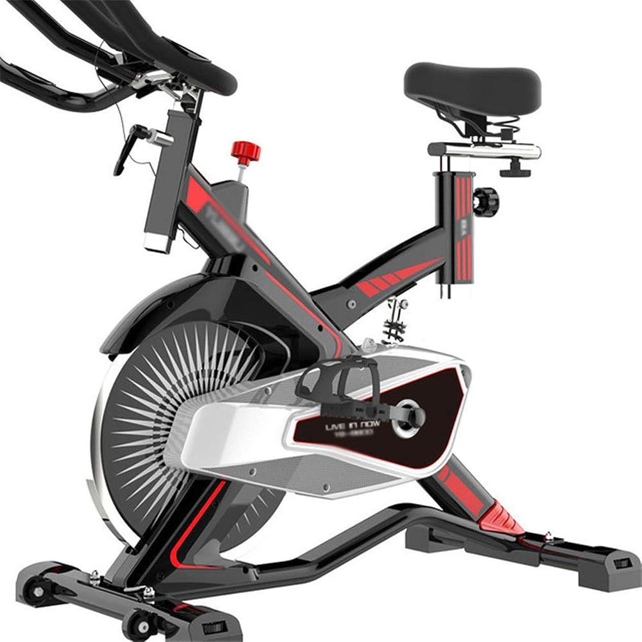 雨の誤解を招く許す室内サイクリングエアロバイク フィットネスエクササイズマシンとトレーニングコンピュータと楕円クロストレーナーと磁気エクササイズスピニングバイク Fitness Cardio Homeサイクリング (色 : 赤, サイズ : Free Size)