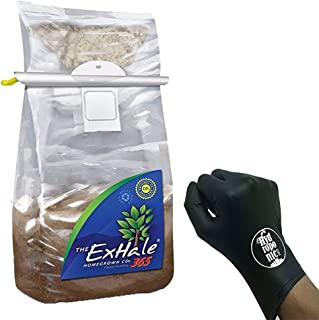 exhale co2 bags ppm