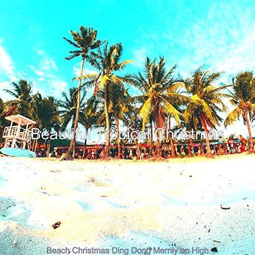 Beautiful Tropical Christmas