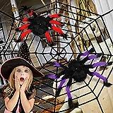 balnore Decoración araña Halloween, Araña Halloween, Telaraña Decor aterradora Decoraciones de Fiesta de Halloween