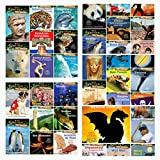 Magic Tree House Fact Trackers Complete 38 Book Set Collection Series (Includes Wild West, Baseball, World War II, Dragons and Mythical Creatures, Dogsledding and Extreme Sports, Vikings, Sharks and.)