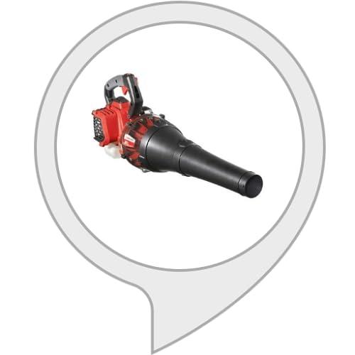 Leaf blower sound