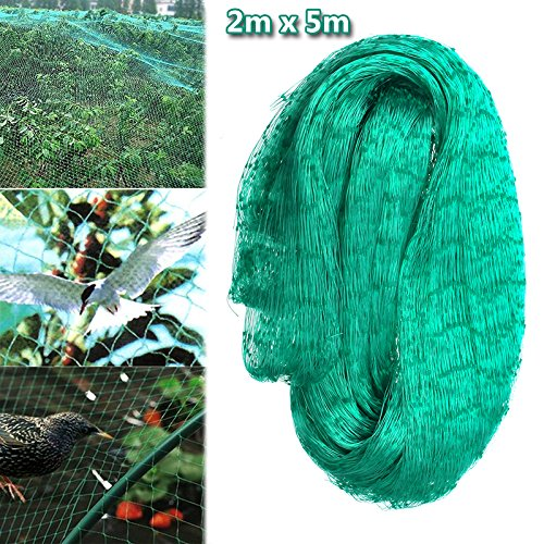 king do way Filet Anti Oiseaux, Filet de Bassin Vert Jardin pour Plant Fruit Arbre en Polyéthylène, Filet de Protection Oiseaux 2 x 5M, Maille 19 x 19MM