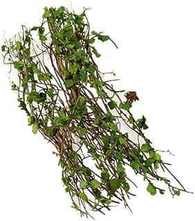 SM SunniMix Harts vinstockar rottingmodell – landskapsmodell miniatyrväxter för gör-det-själv-scener