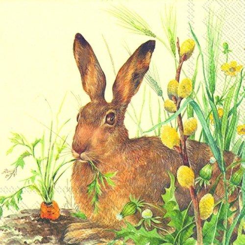 Coniglio e carota Ihr–Confezione da 20tovaglioli di carta tovaglioli da tavola