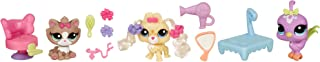 Littlest Pet Shop Every Day Adventure Play Pack - SALON