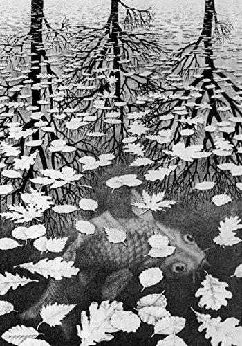 Escher Poster 10 cm 35x50 Poster Affiche Plakat Fine Art Il Negozio di Alex