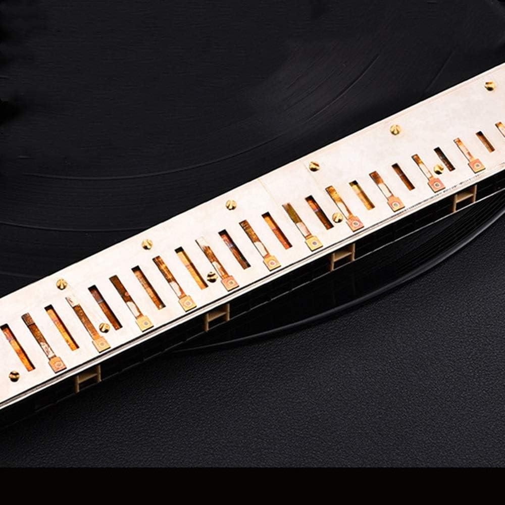YLiansong-home Armonica C Key Hole 10 20 Scala Harmonica C Key Armonica Professionale con Il Caso Chiave di C 24 Fori for Principianti Studenti con i Regali per Principianti Studenti e Bambini