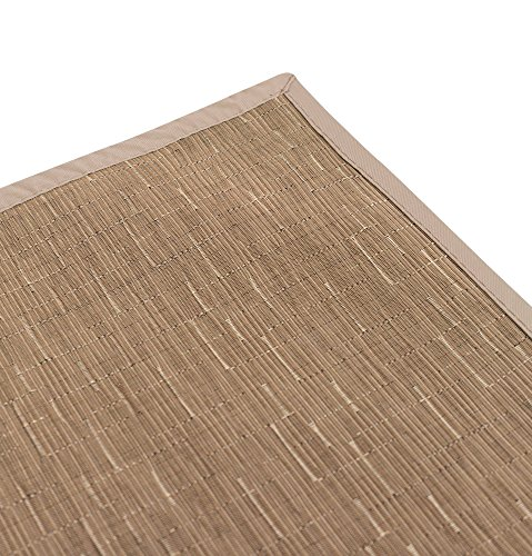 BirdRock Home Indoor Outdoor Floor Runner - Non Slip Floor Mat for Kitchen Hallway Bath Office - 24 x 60 Inches - Tan