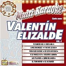 Vol. 4-Exitos-Multi Karaoke by Elizalde, Valentin (2009-03-10)