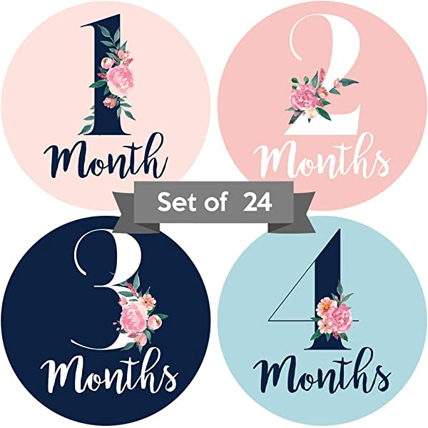 Baby Monthly Stickers Floral Baby Milestone Stickers Set Of 24 Newborn Girl Stickers Month Stickers For Baby Girl Baby Girl Stickers Newborn Monthly Milestone Stickers Set Of 24