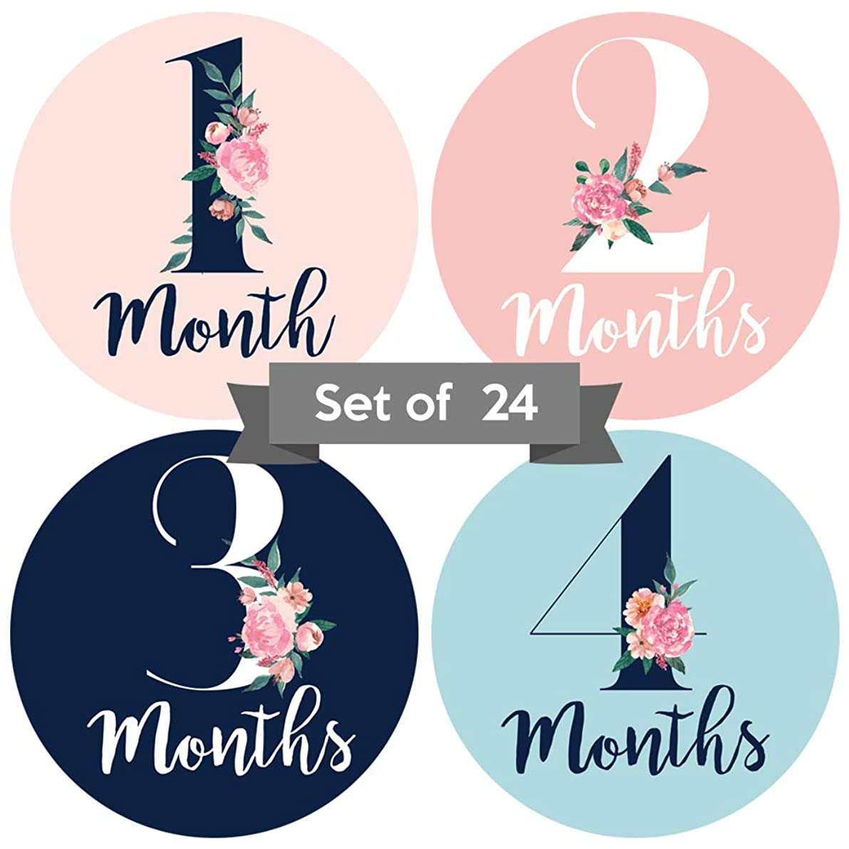 Baby Monthly Stickers | Floral Baby Milestone Stickers | (Set of 24) | Newborn Girl Stickers | Month Stickers for Baby Girl | Baby Girl Stickers | Newborn Monthly Milestone Stickers (Set of 24)