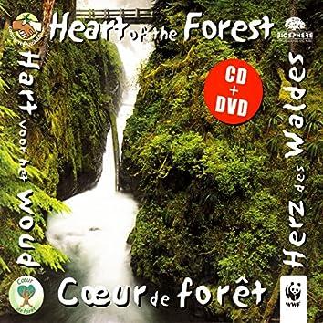 Heart Of The Forest (Cœur De Forêt)