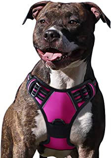 Eagloo Dog Harness No Pull, Walking Pet Harness with 2...
