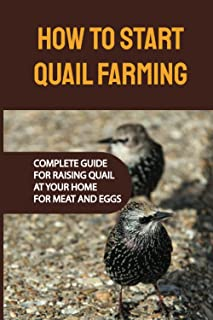 How To Start Quail Farming: Complete Guide For Raising Quail At Your Home For Meat And Eggs: Quails Egg Production