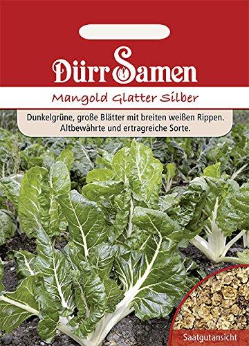 Dürr-Samen - Mangold Glatter Silber
