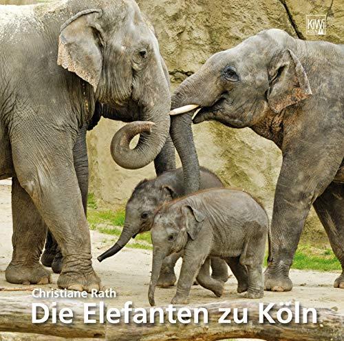 Elefanten zu Köln