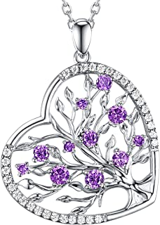 Re Besta Tree of Life Love Heart Jewelry Gifts for Women LC Purple Amethyst Necklace Birthday Gift for Her Family Sterling Silver
