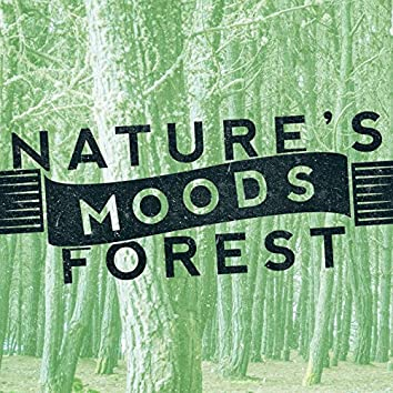 Nature's Moods: Forest