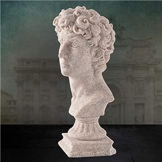 Best statue of david garden ornament Reviews