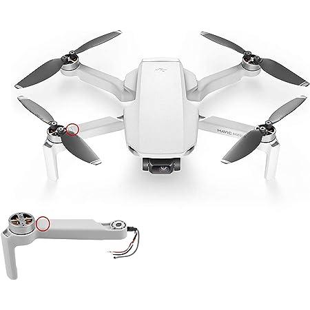 Amazon.com: Front Right Arm Motor Quadcopter Body Spare Accessories Repair  Parts for DJI Mavic Mini Drone by Runchicken (Front Right): Camera & Photo