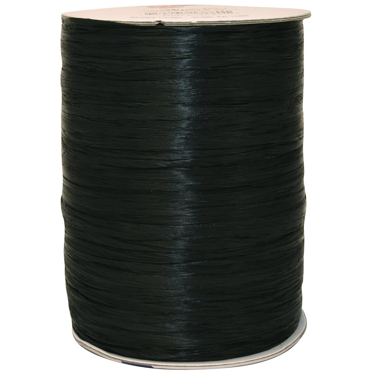 Morex Ribbon Rayon Raffia Fabric Spool, 100 yd., Black