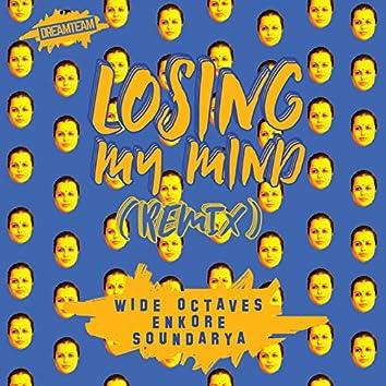Losing My Mind (Remix) - Single