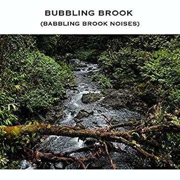 Bubbling Brook (Babbling Brook Noises)