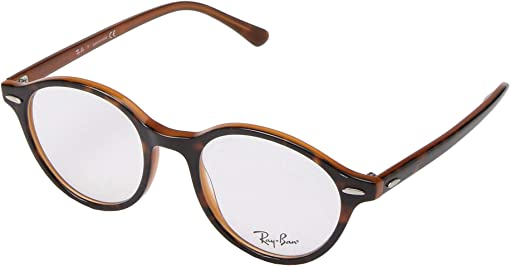 Top Havana/Light Brown