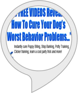Daily Dog Training Tips