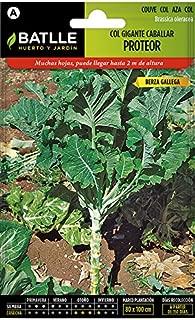 Amazon.es: mesas de cultivo: Jardín