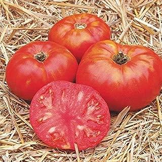 Best cosmonaut volkov tomato heirloom Reviews