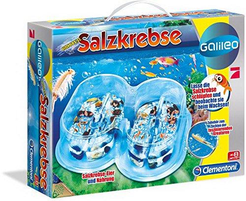 Clementoni Galileo - Salzkrebse Basis Set, 1 Set