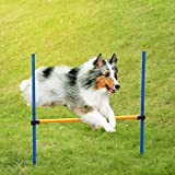 Dog Agility Equipments Review and Comparison