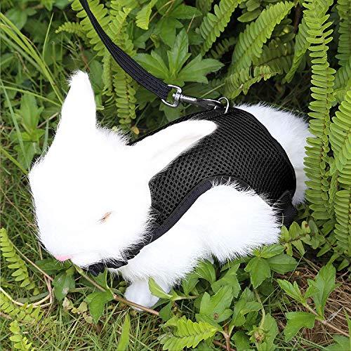 Verstellbares Weiches Kaninchen Geschirr mit Elastischer Leine für Kleines Tier Kitty Haustier Geschirr und Leine für Häschen Katze Little Pet Walking (S(Brust 27,5 -33cm), Schwarz)